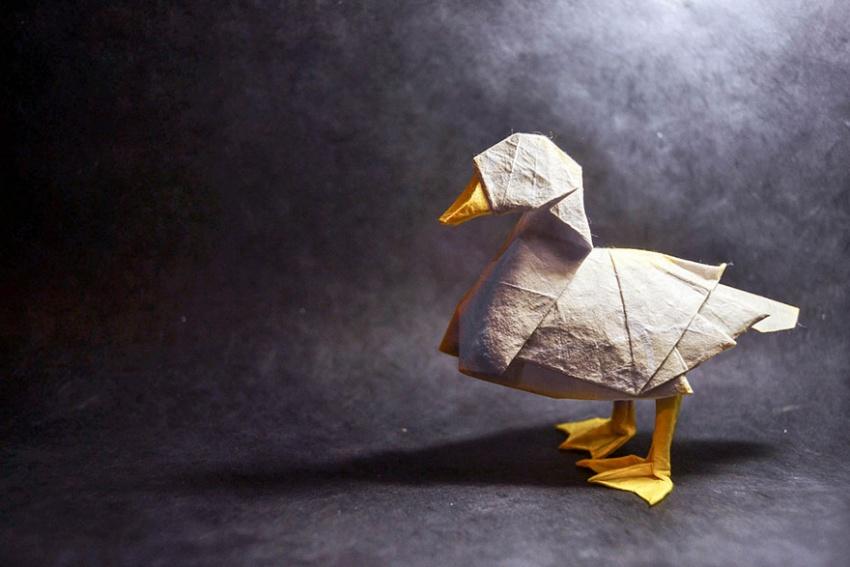 Животные из бумаги