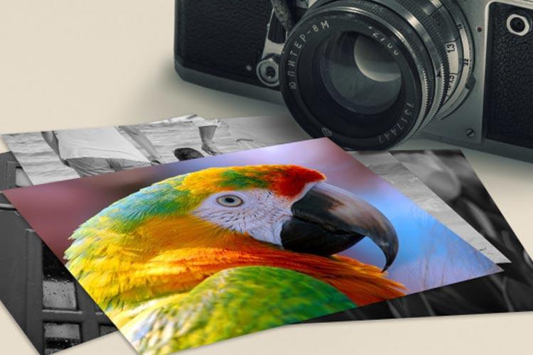 5 советов, которые помогут сделать интересные фотографии