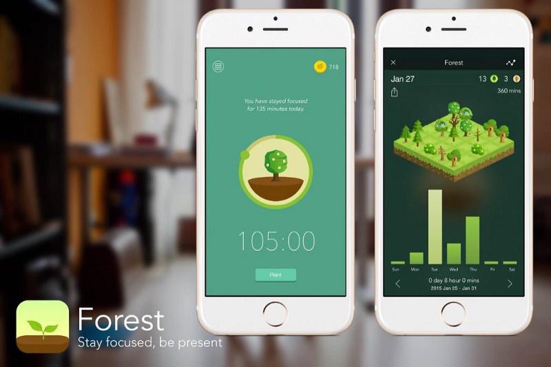 Приложение Forest