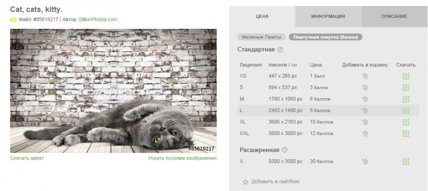 Размеры изображений на фриланс-бирже Fotolia
