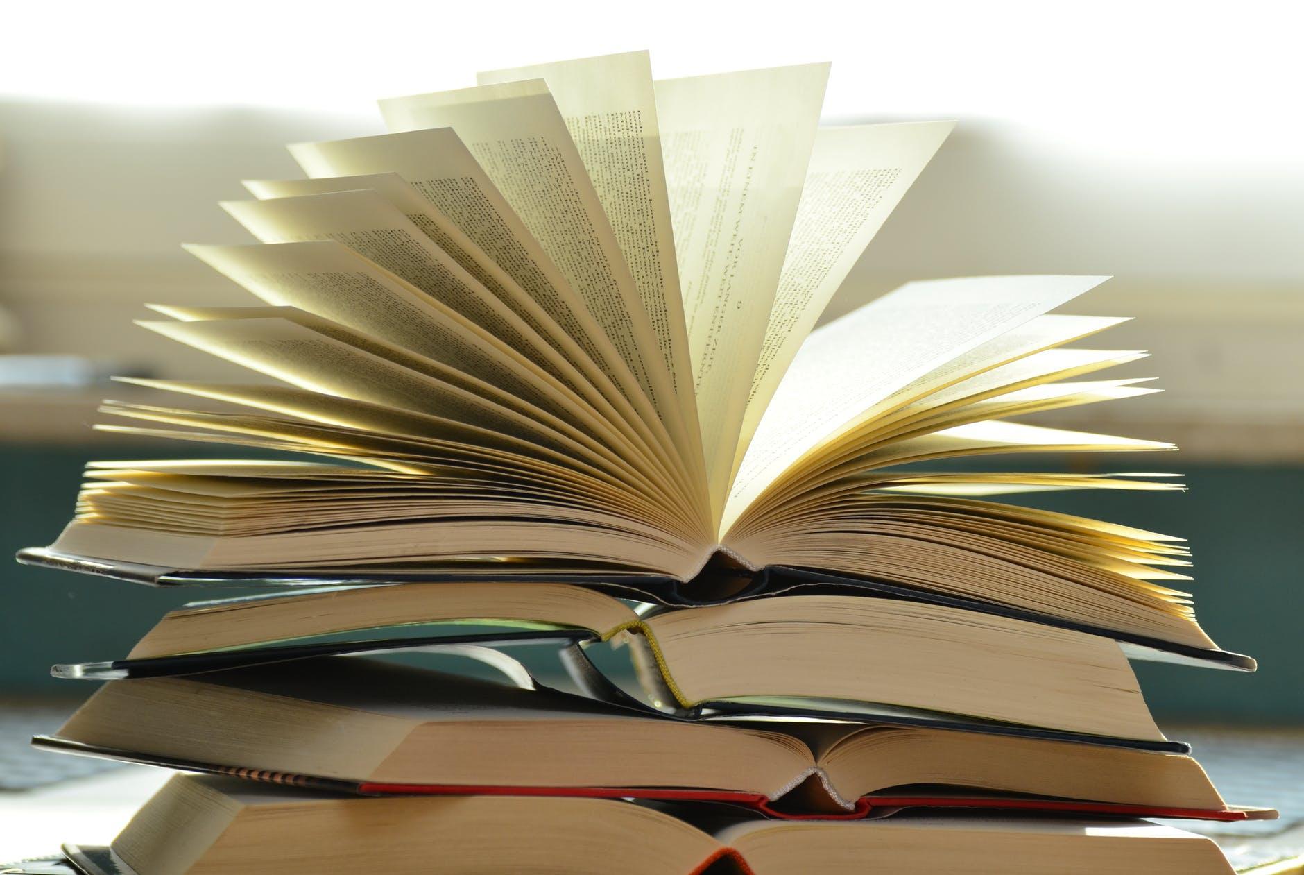 Читать дополнительную литературу картинки, черные розы подложка