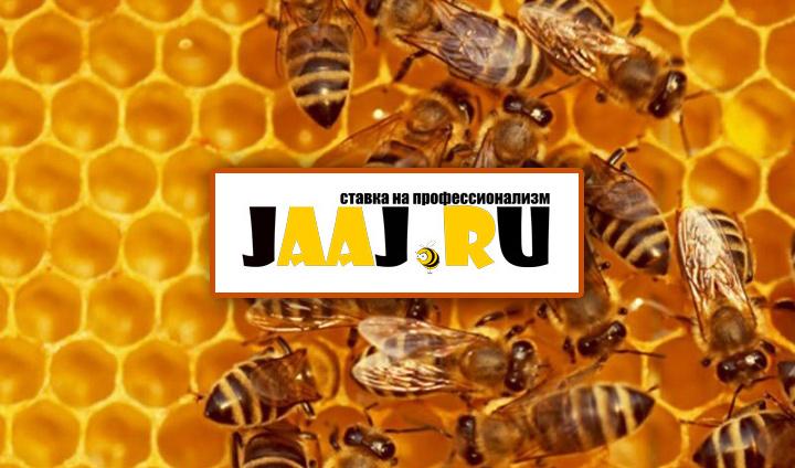 Фриланс-биржа Jaaj.ru запустила сервис обучающих квестов