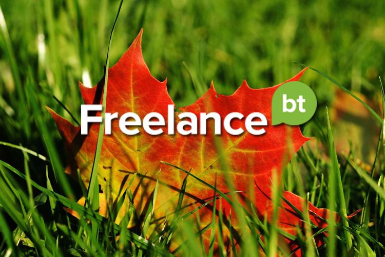 Победители конкурсов на Freelance.Boutique. 30 октября - 6 ноября 2015