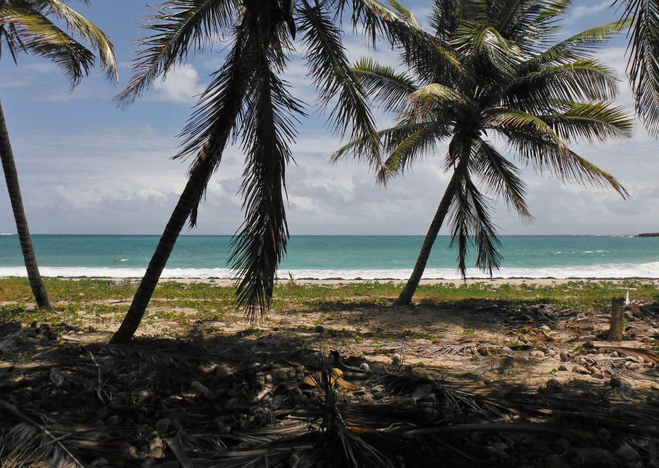 Алина Краснова: 5 причин поехать на Мартинику