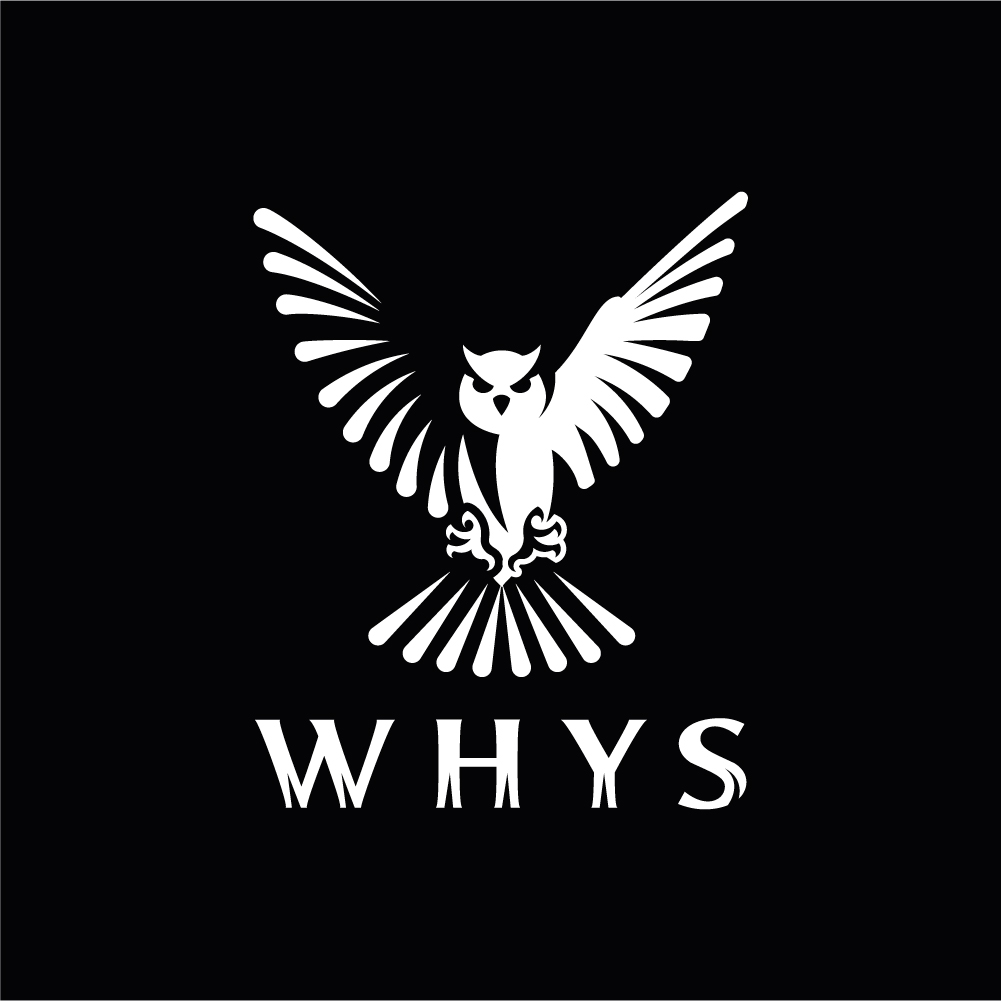 Дмитрий Дзендолетс: WHYS company