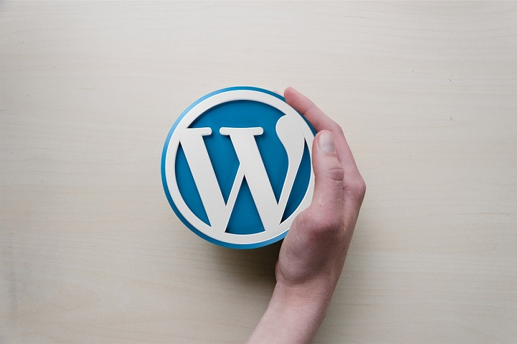Все, что вы всегда хотели знать о WordPress (но боялись спросить)
