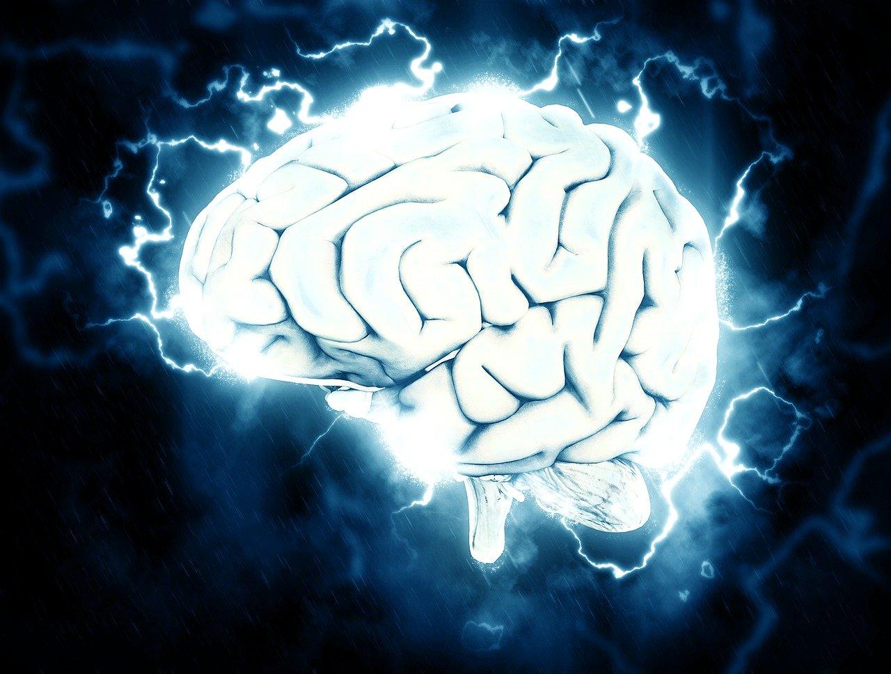 Как тренировать свой мозг, чтобы запоминать больше