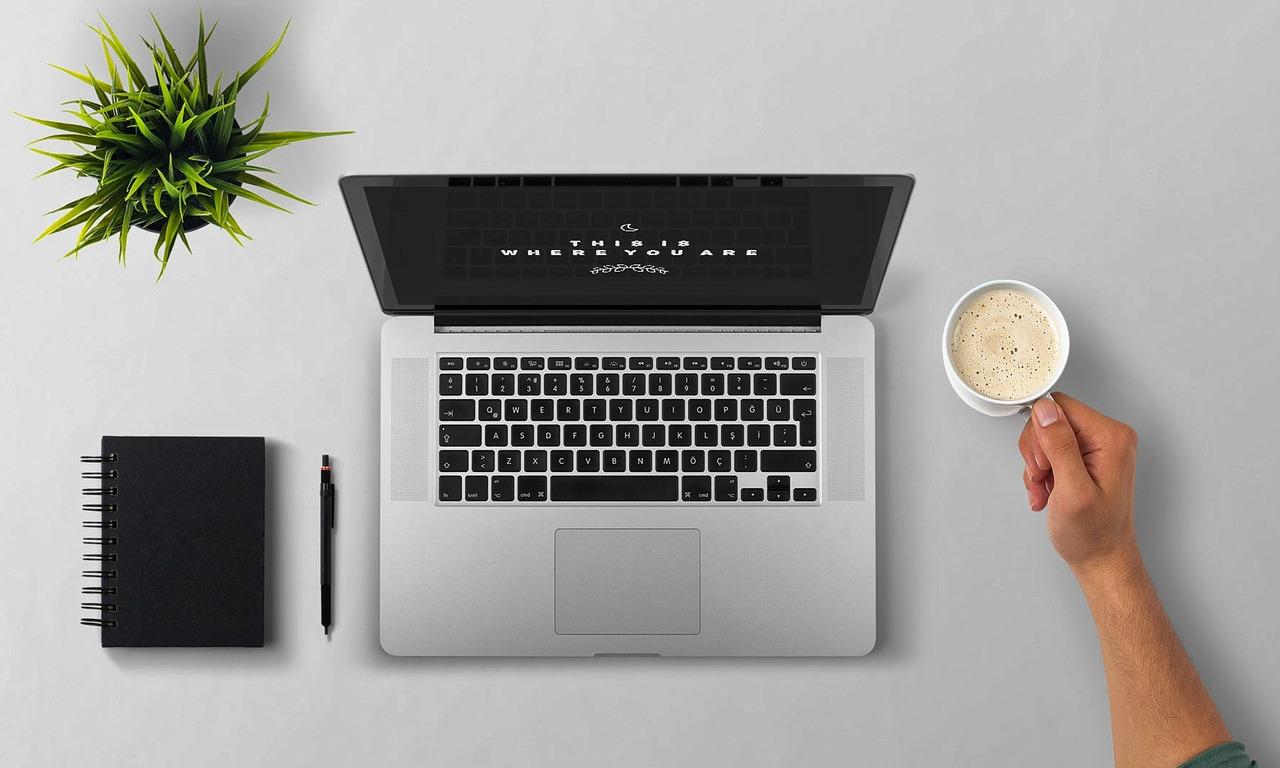 Как начать бизнес в области веб-дизайна без портфолио и опыта